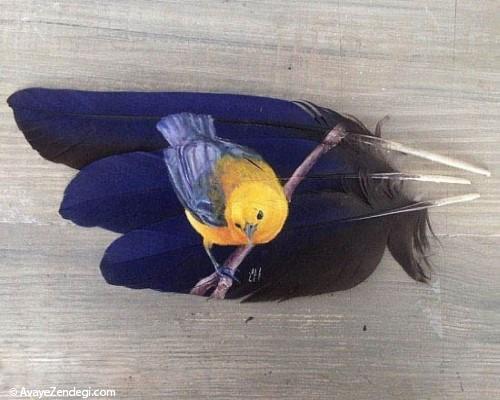 نقاشی جالب و دیدنی روی پر پرندگان