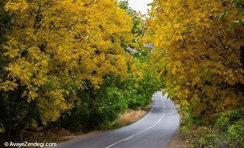 پاییز در بهشت هاور