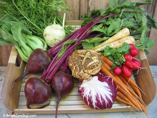 زنده باد سبزیجات پاییزه