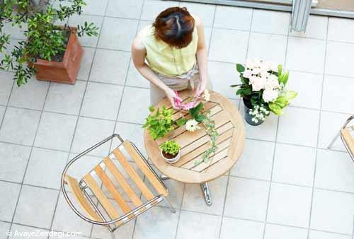 فواید شگفت انگیز گل و گیاه خانگی