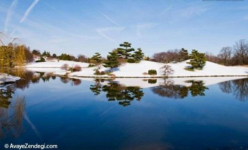 زمستان زیبا در باغ های گیاه شناسی دنیا