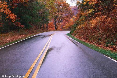 عکس طبیعت جاده