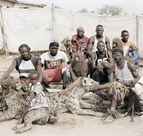 حیوانات خانگی در آفریقا