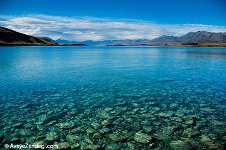 گشت و گذار در طبیعت وحشی نیوزیلند