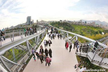 پل طبیعت دومین طرح برتر جهان