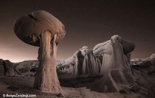 گشت و گذار تصویری در بیابان های آمریکا