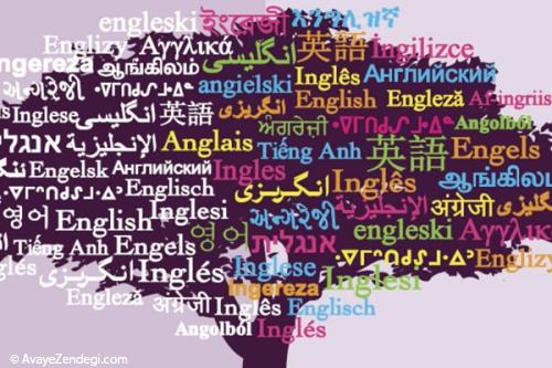 معرفی کتاب جنبه های سیاسی زبانشناسی