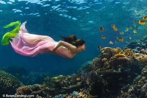 زیباترین تصاویر عکاسی زیر آب